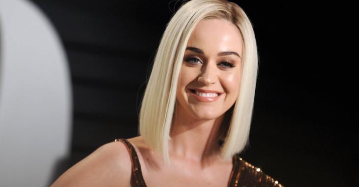 Katy Perry ne ressemble plus du tout à ça!