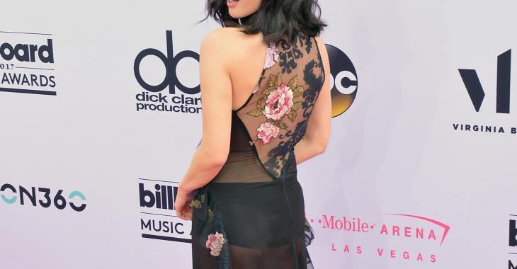 Oubliez Céline... la plus belle robe de la soirée d'hier est celle de cette actrice!