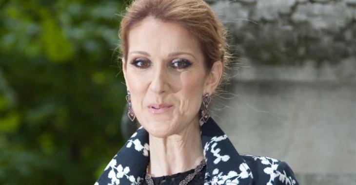 Céline Dion se présente à un défilé de mode, mais sa robe vole la vedette!