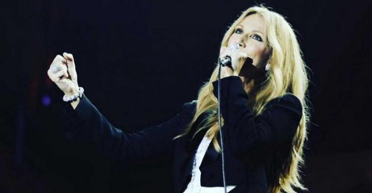 Voice de quoi a l'air la table de maquillage de Céline Dion!