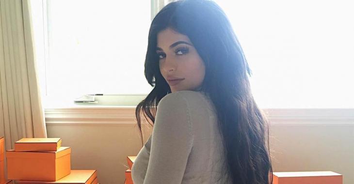 """Une photo de Kylie Jenner et son """"troisième mamelon"""" fait réagir les internautes..."""