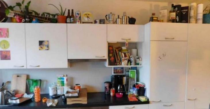 Pouvez-vous trouver le chat caché dans cette cuisine? La plupart abandonne avant d'aller voir la réponse!