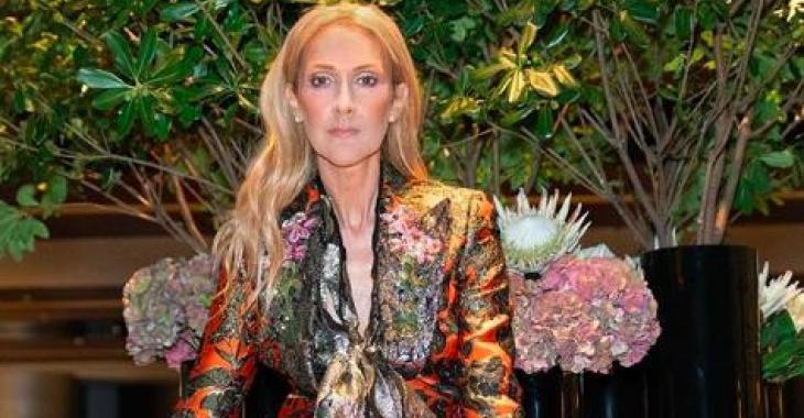 Céline Dion fait exploser le Web avec son nouveau look félin