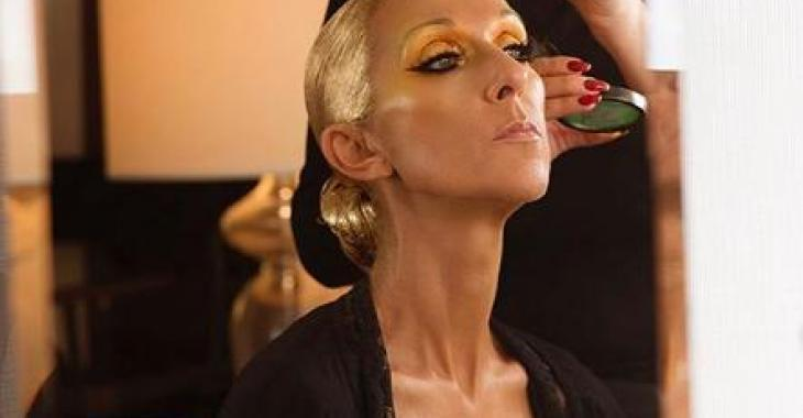 La robe de Céline Dion vole une fois de plus la vedette sur sa plus récente photo