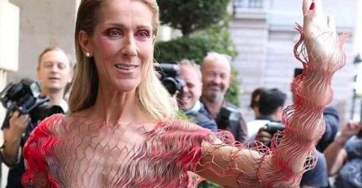 DERNIÈRE HEURE: Céline Dion répond aux fausses rumeurs qui circulent au sujet de Pepe Munoz